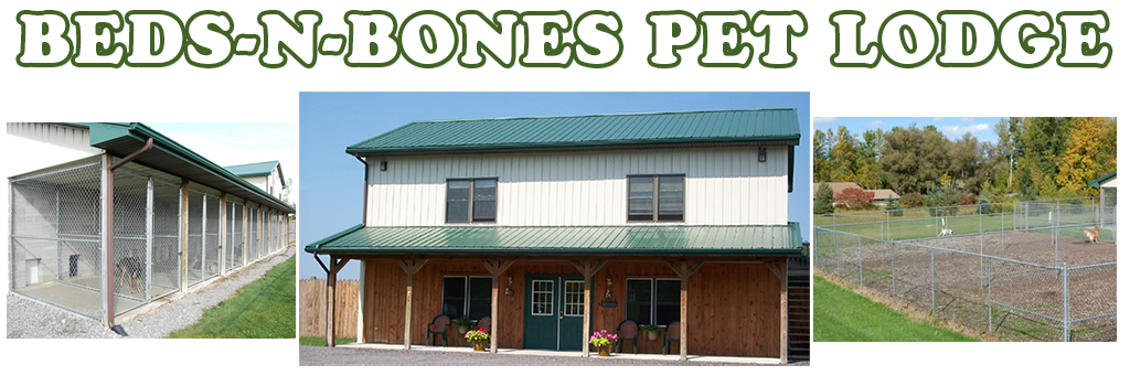 BEDS-N-BONES PET LODGE, Batavia NY, (585) 343-8544